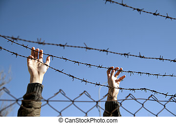 desire for freedom - hands reach toward freedom through the...