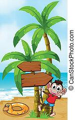 deska, plaża, małpa, strzała, interpretacja