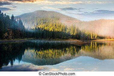 deslumbrante, nebuloso, amanhecer, ligado, a, lago, em, floresta