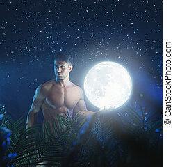 desnudo, joven, selva, noche, retrato, modelo