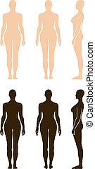 desnudo, posición, mujer, silueta