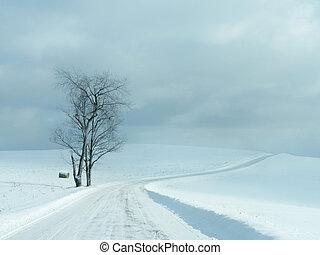 desolado, inverno, estrada