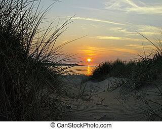 Summer sunset landscape scene at the beach of Renesse, Netherlands