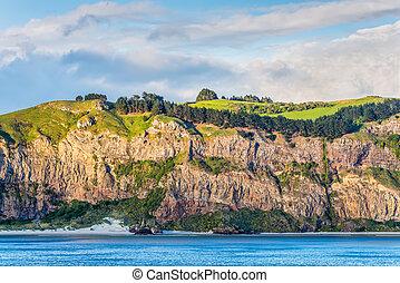 despeñadero rocoso, cara, con, arbusto, y, praderas, encima, en, nueva zelandia, costa