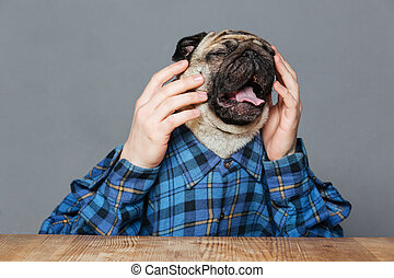 Desperate sad pug dog with man hands sitting and crying