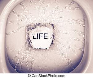 desperdiçando, vida