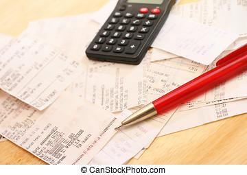 despesas calculadoras