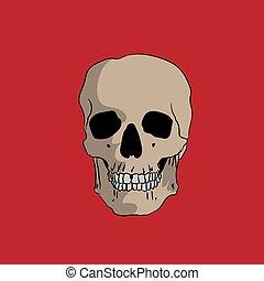dessiné, arrière-plan rouge, crâne, main
