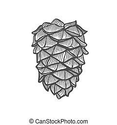 dessiné, cône, pin, main