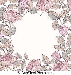dessiné, cadre, main, jardin, rose