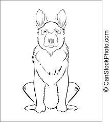 dessiné, chien, illustration, main