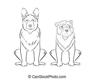 dessiné, chiens, illustration, main