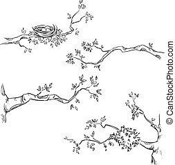 dessiné, ensemble, branches, main