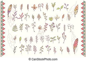 dessiné, fleurs, plumes, collection, main