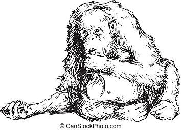 dessiné, main, orang-outan, mignon