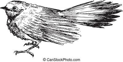dessiné, oiseau, main