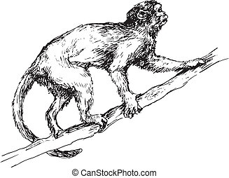 dessiné, singe, main