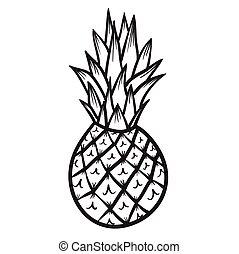 dessiné, vecteur, ananas, illustration, main