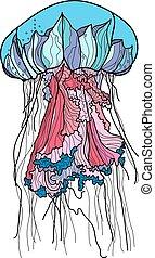 dessiné, vecteur, illustration., main, méduse