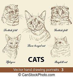 dessin, 3, ensemble, main, chats