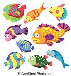 dessin animé, animal mer, illusration, collection