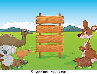 dessin animé, australie, bois, sauvage