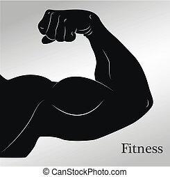 dessin animé, biceps