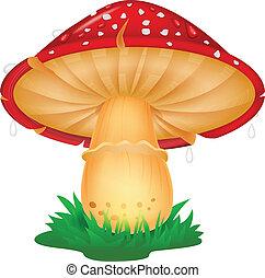dessin animé, champignon