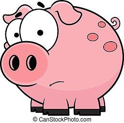 dessin animé, cochon, inquiété