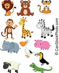 dessin animé, collection, animal