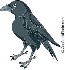 dessin animé, corbeau