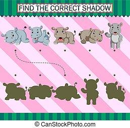 dessin animé, correct, trouver, shadow., rhinocéros, mignon