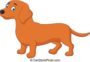 dessin animé, heureux, chien, teckel