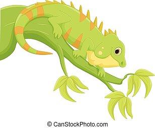 dessin animé, iguane