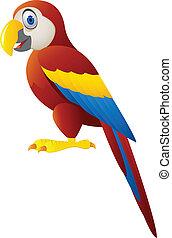 dessin animé, macaw, isolé, oiseau