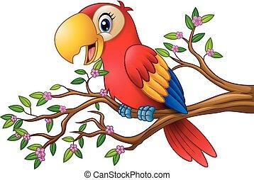 dessin animé, macaw, sur, branche arbre