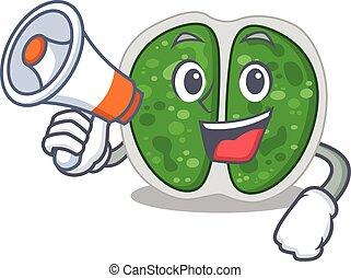 dessin animé, porte voix, caractère, bactérie, avoir, chroococcales