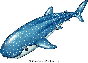 Requin baleine baleine coupure render sur shark - Dessin requin baleine ...