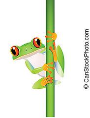 dessin animé, rigolote, grenouille