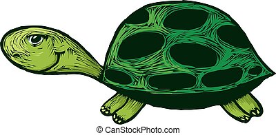 dessin animé, sourire, tortue