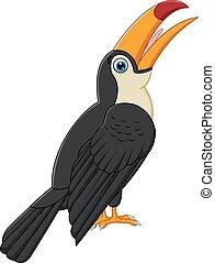 dessin animé, toucan, mignon