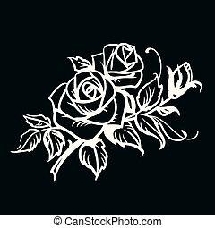 dessin, noir, roses., fond, contour, blanc