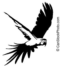 Dessiner lin aire perroquet illustration peinture - Dessiner un perroquet ...