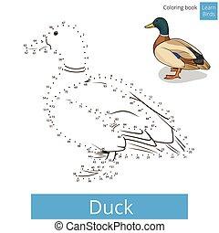dessiner, vecteur, apprendre, oiseau, canard