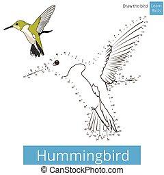 dessiner, vecteur, oiseau, colibri, apprendre