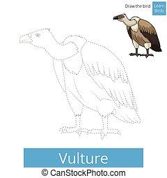 dessiner, vecteur, vautour, oiseau, apprendre