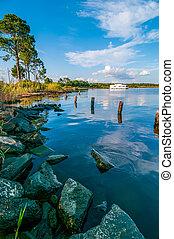 destin florida beach scenes - water life and beach scenes at...