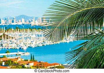 Destination San Diego, California. Palm Leaf and Blurred San...
