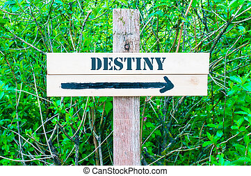 DESTINY written on Directional wooden sign with arrow pointing to the right against green leaves background. Concept image with available copy space