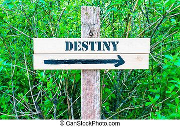 DESTINY Directional sign - DESTINY written on Directional...